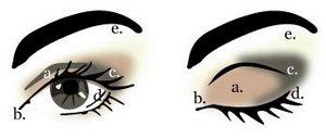 Уроки  макияжа глаз в картинках мейкап (make up)